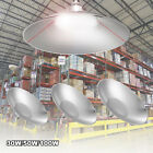 LED High Bay Light 30W/50W/100W Warehouse Factory Gym Cool Fixtures Hanging Lamp