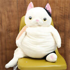31inch Hot Pop Anime Stuffed Plush Cats Toy Cute Big Belly Cat Animals Doll 80cm