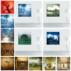 Art - Retro Wall Oil Canvas Flowers Church Art Painting Unframed Living Room Decor
