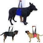 Dog Lift Harness Sling ACL Brace for Rear Leg Support of Old Dogs Help up FuZ1