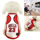 pet dog bulls basketball jersey puppy jordan