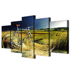 Countryside Field with Vintage Bicycle 5 Piece Wall Painting Set Panels