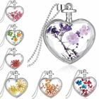 Charm Silver Natural Real Dried Flower Heart Glass Pendant Necklace Jewelry New