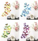 3d Butterfly Wall Art Decal Stickers  Mural Home Decoration 12pcs