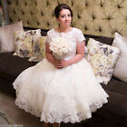 Plus Size Tea Length Wedding Dresses Short Sleeves Lace Bridal Gowns 6 8 10 12+