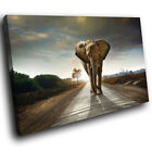 Africa Elephant Sunset Funky Animal Canvas Wall Art Large Picture Prints
