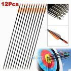 "36pcs 33"" Archery Arrow Fiberglass Arrows Nocks Fletched Target Practice Hunting"