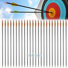 "Внешний вид - 36pcs 33"" Archery Arrow Fiberglass Arrows Nocks Fletched Target Practice Hunting"