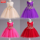 Princess Wedding Party Prom Birthday Dress Skirt Tutu Dresses for Baby Girl 1-5Y