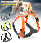 Small Dog Walking Harness Reflective Outdoor Adjustable No Pull Puppy Harness