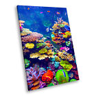 Animal Portrait Photo Canvas Picture Prints Wall Art Sea Life Coral Reef Fish