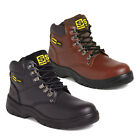 Sterling SS806 and SS807 Leather Hiking Safety Work Boot Trainer Steel Toe Cap