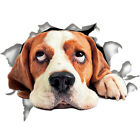 3D 5 Kinds of Funny Cute Dog Puppy Side Car Stickers Vinyl Car Wall Window.Decal