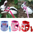 Kyпить 1PC Rabbit Hamster Vest Harness With Leash Bunny Chest Strap Ferret Working Rope на еВаy.соm