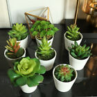 1pc Simulation Artificial Potted Succulent Plant For Household Living Room Decor
