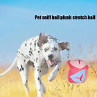 Relieve Emotion Dog Cat Bite Toy Food Distribution Pet Sniffing Ball Nose Work