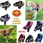Внешний вид - Dog Puppy Harness Vest Patches Reflective ESA No Choke No Pull PTSD Adjustable