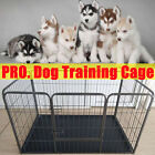 PREMIUM DOG CAGE PUPPY TRAINING CRATE PET CARRIER - SMALL MEDIUM LARGE XL CAGES