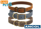 Ancol Timberwolf Leather Collar Premium Quality Dog Puppy