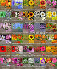 Flower Seeds ~~30 TYPES GARDEN FRAGRANT -BEEs BUTTERFLY