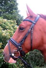 FSS English Comfort Padded POLL Crank Flash Bridle NEW