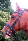 FSS English Silver Comfort Padded Poll Dressage CRANK Flash Combined Bridle NEW