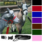 GOAT HEADCOLLAR with MATCHING LEAD, SNAP-FASTENING, 9 COLOURS. NEW!