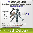 TRADE PRICE 100 x No14 A4 Stainless Steel POSI COUNTERSUNK Self Tapping Screws