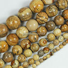 4/6/8/10mm Natural Picture Jasper Gemstone Round Ball Loose Beads 15.5""