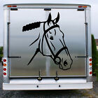 HORSE Head Stable Trailer Horsebox Equestrian Graphic Decal Sticker Transfer