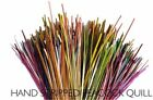 Veniard Fly Tying Stripped Peacock Quill Feathers - Choose Colour - Trout flies