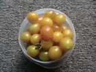 Heirloom Tomato Seeds You Pick the Variety