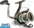 Shimano Sienna FD Spinning Fishing Reel BRAND NEW at Otto's Tackle World