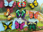 BUTTERFLY MAGNETS SET OF 2, 5 OR 9 BRIGHT ACRYLIC SMALL FRIDGE NOVELTY