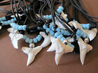 REAL TIGE SHARK TOOTH pendant cord necklace blue beads WHOLESALE BULK surfer boy