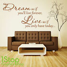 DREAM LIVE WALL STICKER QUOTE - BEDROOM LOUNGE WALL ART DECAL X170