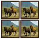 HORSES - SET OF NOVELTY FUN COASTERS - SETS OF 4, 6 OR 8 - GIFT - EASY CLEAN