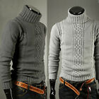 Men's Winter Slim Solid Turtleneck Knit Pullover Warm Sweater  2 Colors Choose