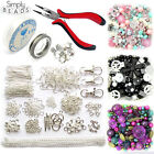 Starter Kit Silver Plated Findings Pliers Elastic Tigertail Beads Charms Chain