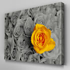 FL377 Yellow Rose In Bouquet Canvas Wall Art Multi Panel Split Picture Print