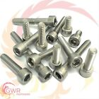 M4 M5 M6 M8 A2 Stainless Steel Allen Bolt Socket Cap Screws Hex Head DIN 912