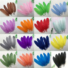 Внешний вид - Wholesale! Beautiful natural goose feather 15-20cm / 6-8inches 20/50/100pcs