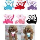 Soft Mesh Fabric Puppy Dog Lead Leash with Clip Pet Adjustable Harness Vest