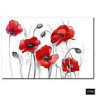 Floral Poppies Flowers   BOX FRAMED CANVAS ART Picture HDR 280gsm