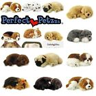 Perfect Petzzz � Sleeping Pet Soft Fur Breathing Toy Dog Cat Animated Gift Pack