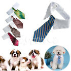 gentleman-pet-supplies-puppy-necktie-small-dog-costumes-clothes-tie-for-dog-cat