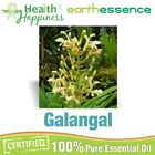 earthessence GALANGAL ~ CERTIFIED 100% PURE ESSENTIAL OIL ~ Therapeutic Grade
