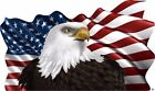 American Flag Eagle decal Camper RV motor home mural graphic