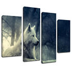 MA463 White Wolf Arctic Forest Shine Canvas Wall Art Multi Frame Picture Print