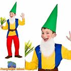 KIDS FUNNY GARDEN GNOME DWARF BOOK WEEK Age 3-10 Boys Childs Fancy Dress Costume
